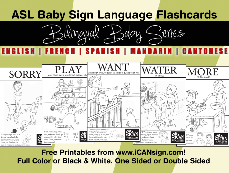 babysignlanguageflashcards bilingualbaby ad Baby Sign Language and Bilingualism