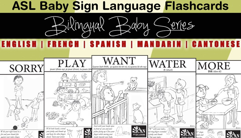 Bilingual Baby Flashcards